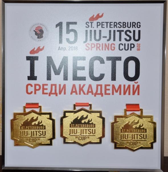 "St. Petersburg Jiu-Jitsu Spring Cup 2018. Приз в но-минации ""Best Academy"" в Ярославле!"